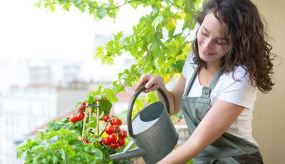 Come creare un orto sul tuo balcone. Green emotion
