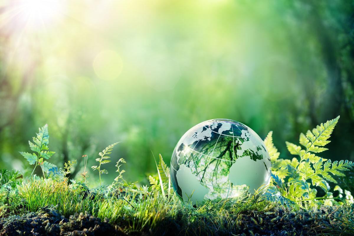 Giornata Mondiale della Terra: perché è sempre più necessaria?