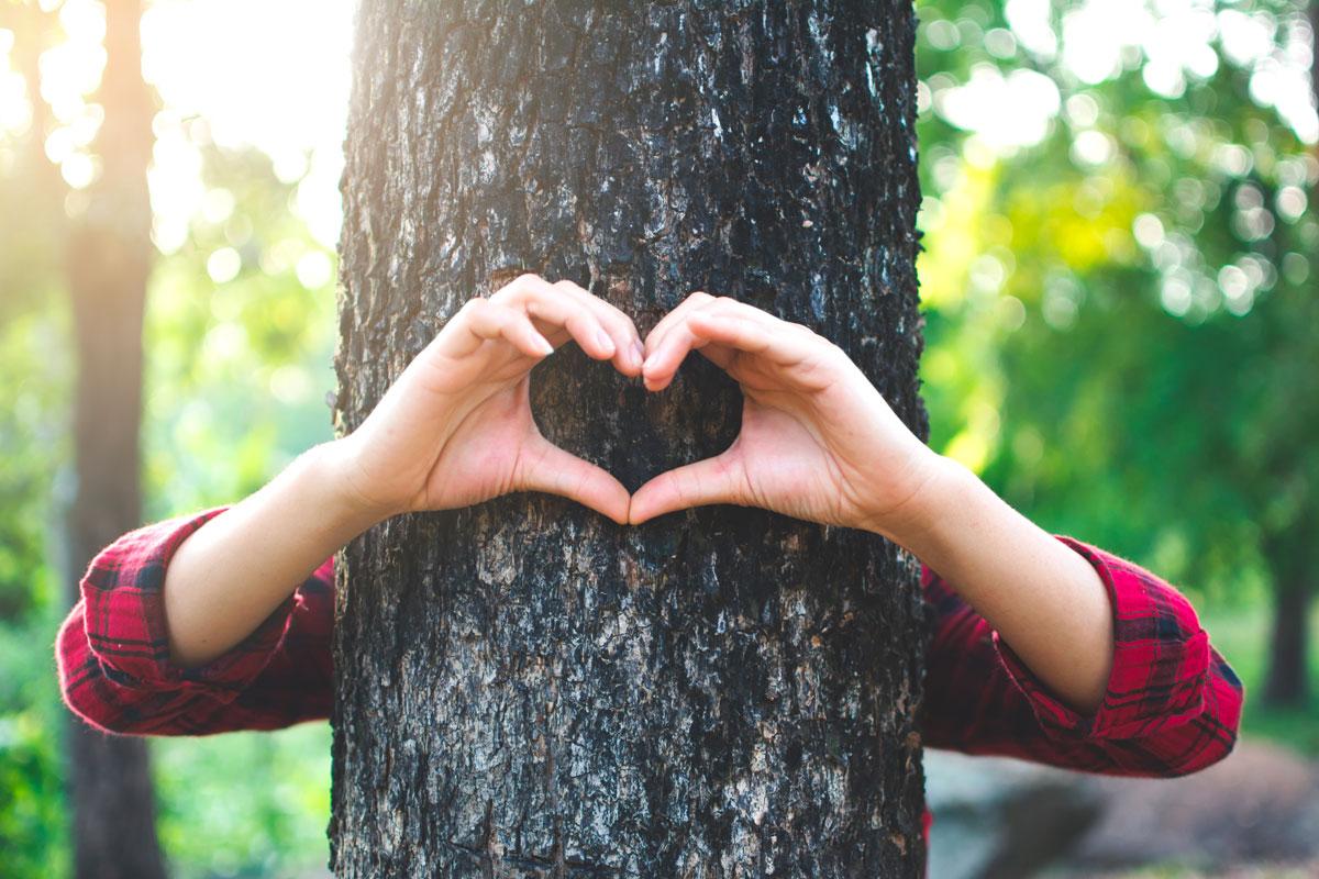 Giornata Mondiale dell'Ambiente: 5 modi per tutelare il pianeta